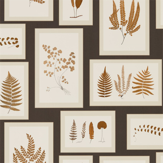 Picture of Fern Gallery Charcoal/Spice - DWOW215713