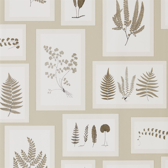 Picture of Fern Gallery Linen/Sepia - DWOW215714